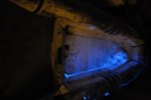 luminol_in_dinghy